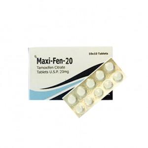 MAXI-FEN-20